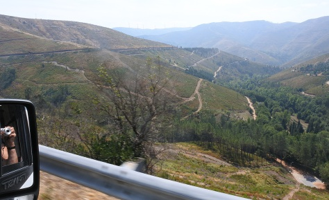 landschap-langs-tolweg
